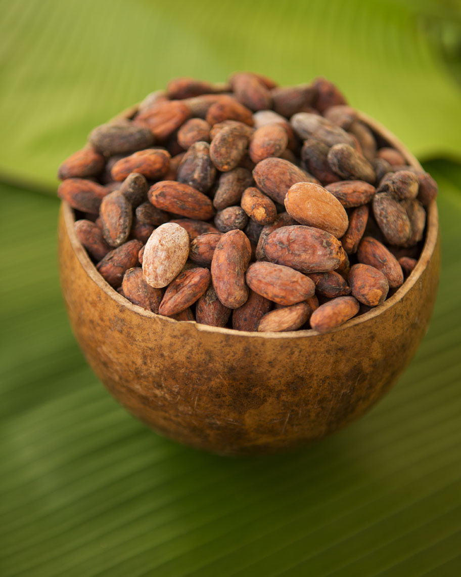 05_Kris_Davidson_National_Geographic_Cacao_Bean_Ecuador_Amazon