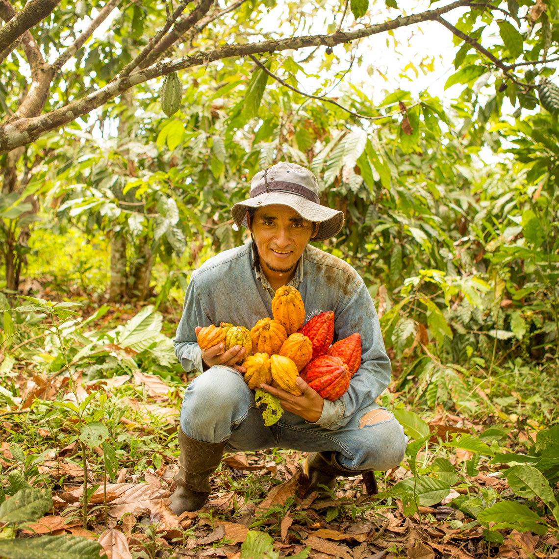 30_Kris_Davidson_National_Geographic_Cacao_Harvest_Man_Ecuador_Amazon