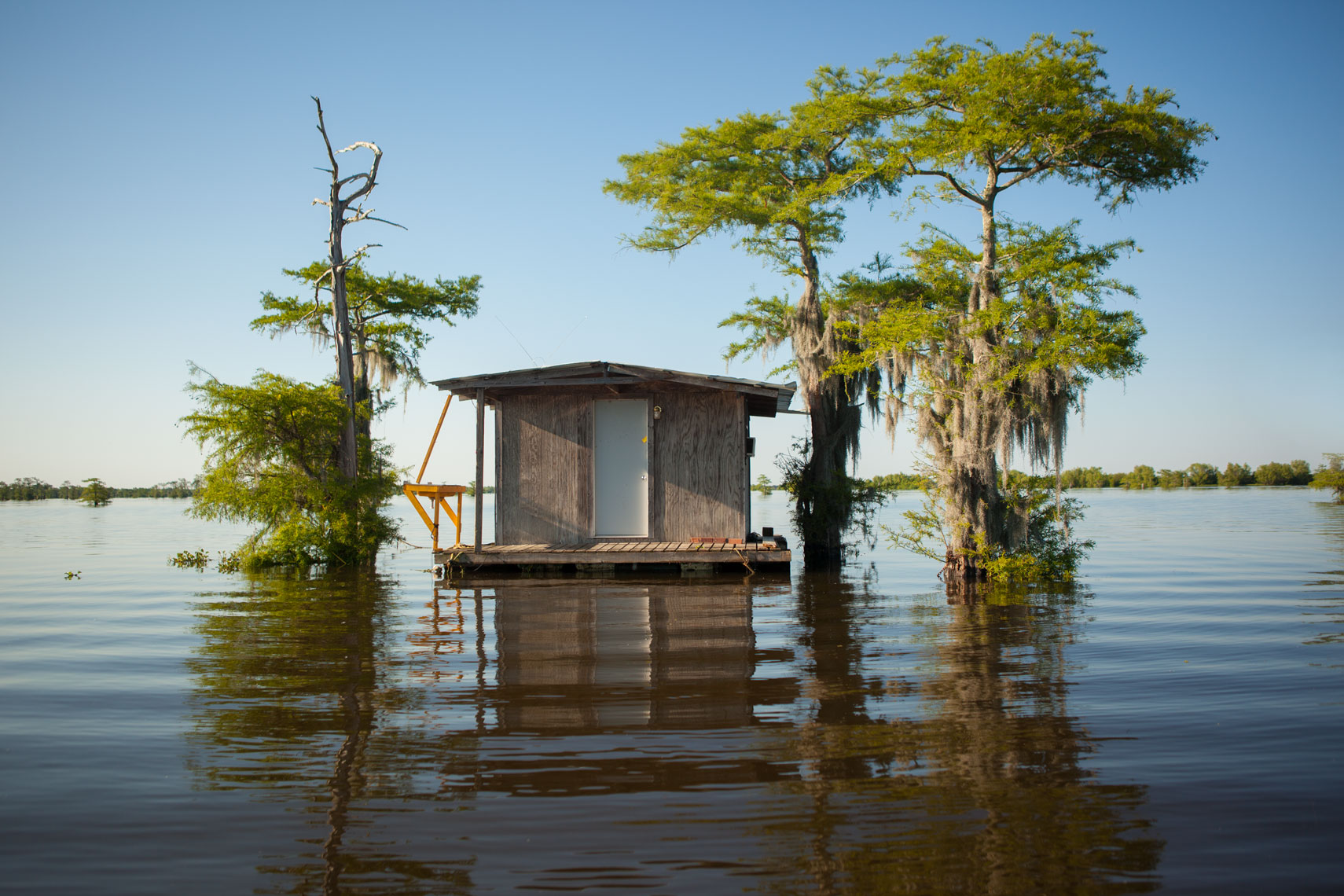 31_Kris_Davidson_National_Geographic_Swamp_Atchafalaya_Louisiana